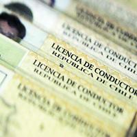 Gobierno inicia proceso para implementar una nueva licencia de conducir digital